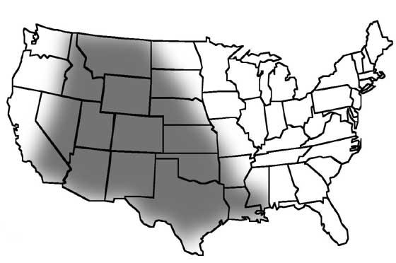 Seleniferous soils of North America