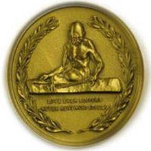 Image result for Gandhi Peace Prize