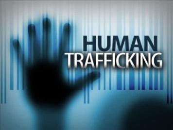 http://media.graytvinc.com/images/690*517/human+trafficking17.jpg