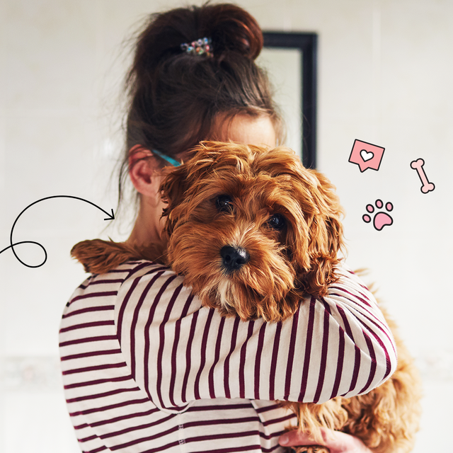Picture of a person holding and hugging a small shaggy long haired brown dog.