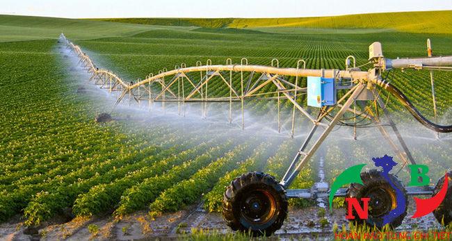 Ứng dụng nông nghiệp công nghệ cao liệu có phải là con đường ngắn nhất?
