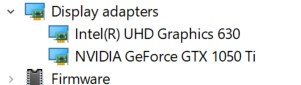 Expanded Display Adapters section in the Device Manager