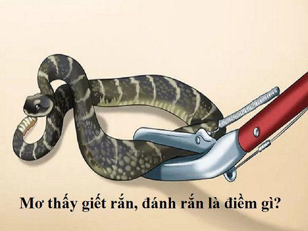 Đánh giá về giấc mơ giết rắn?