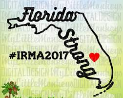 Image result for florida strong hurricane logo
