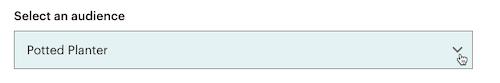 El cursor hace clic - desplegable Público - Subir archivo