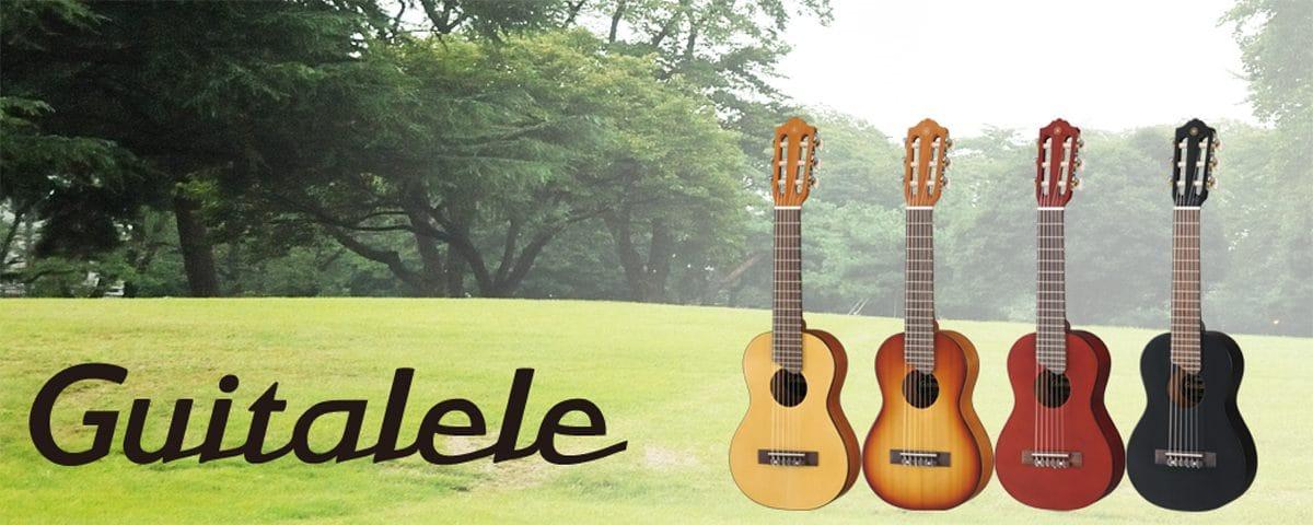 mua đàn guitar mini