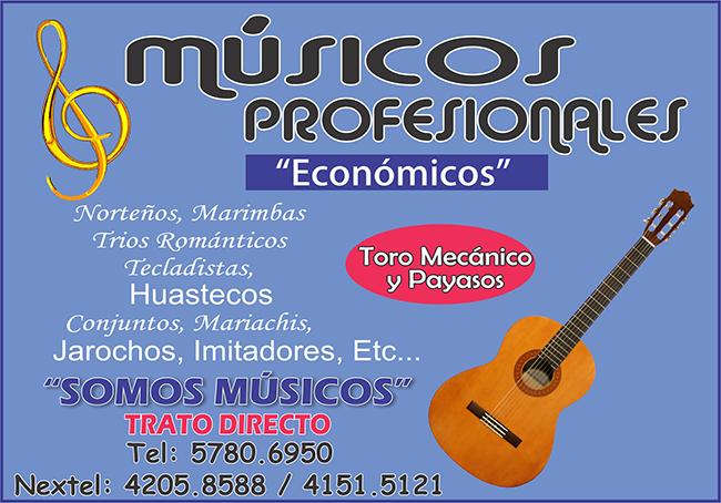 MUSICOS PROFESIONALES