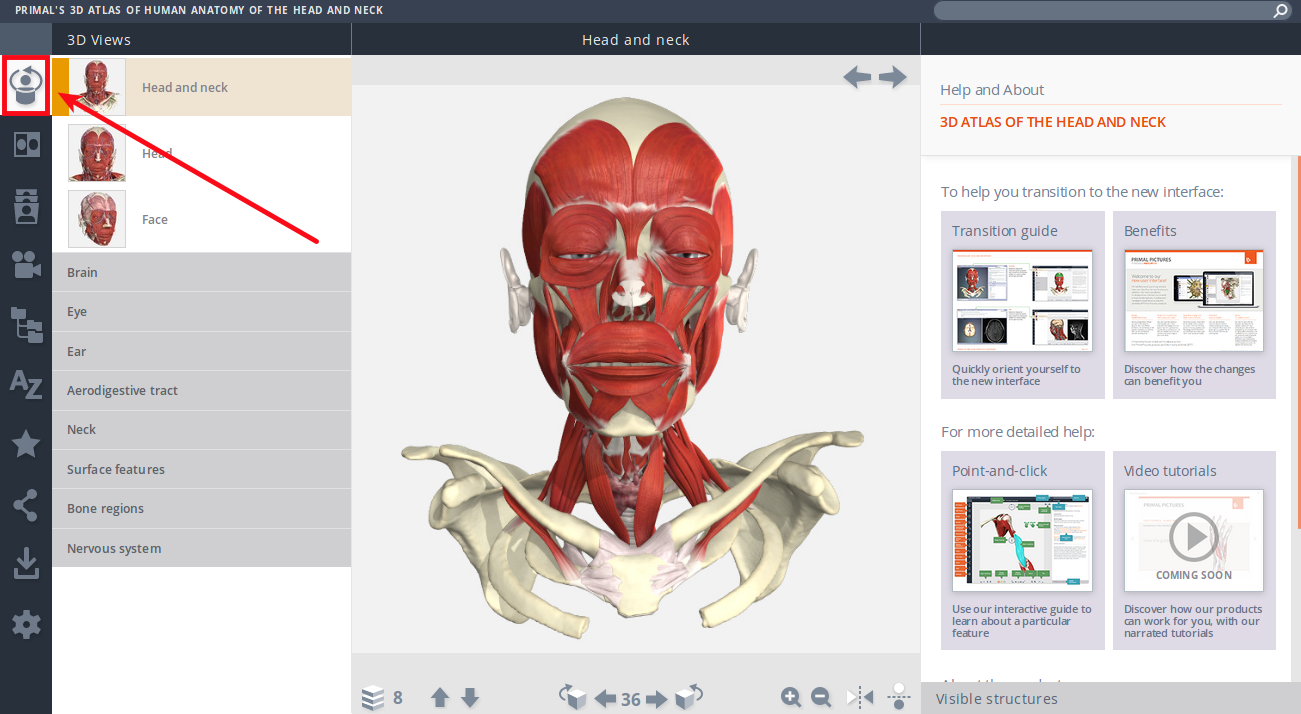 Primal's 3D Atlas of Human Anatomy of the Head and Neck - Mozilla Firefox_067.png