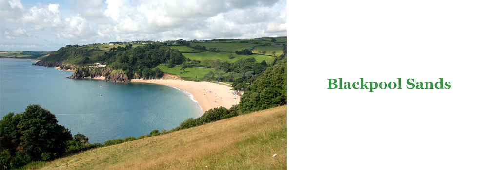 If you are looking for a pretty beach for a family day then look no further then Blackpool sands.