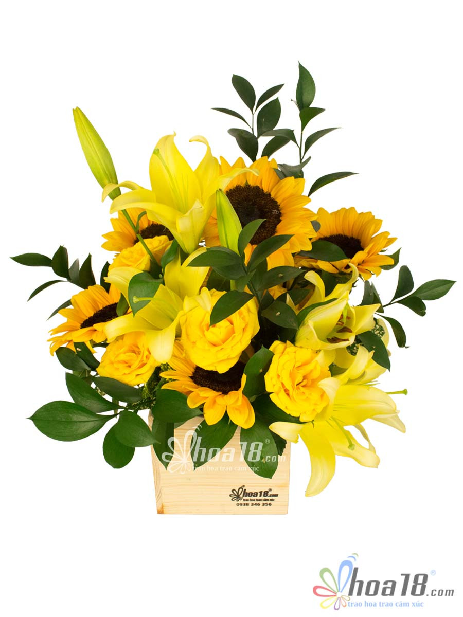 hộp hoa hồng vàng đẹp