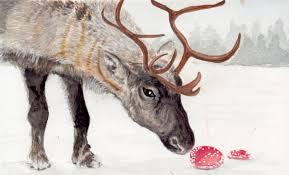 mushroom reindeer.jpg