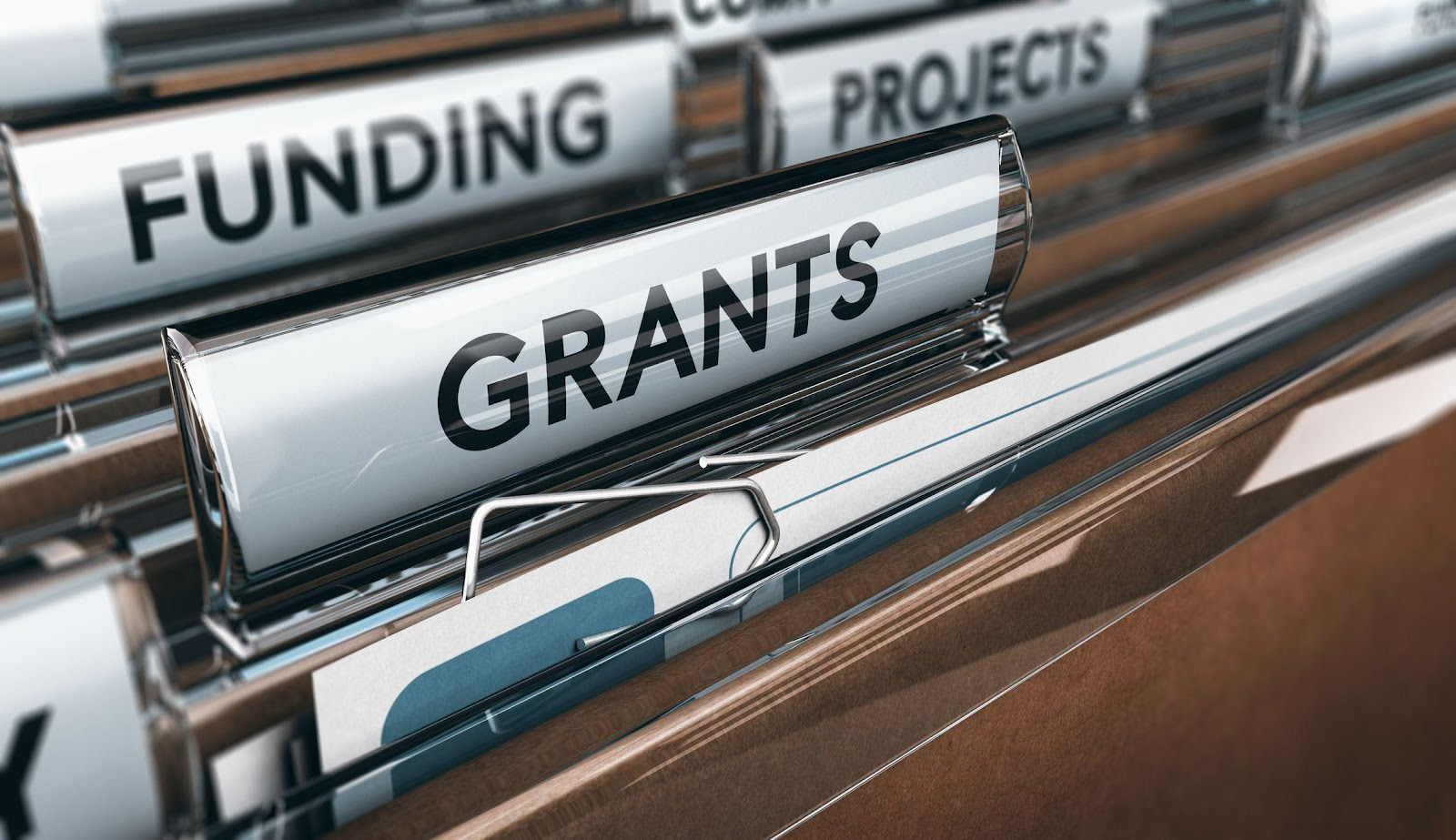 Government Grant Definition