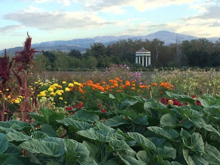 Sunol Water Temple and AgPark