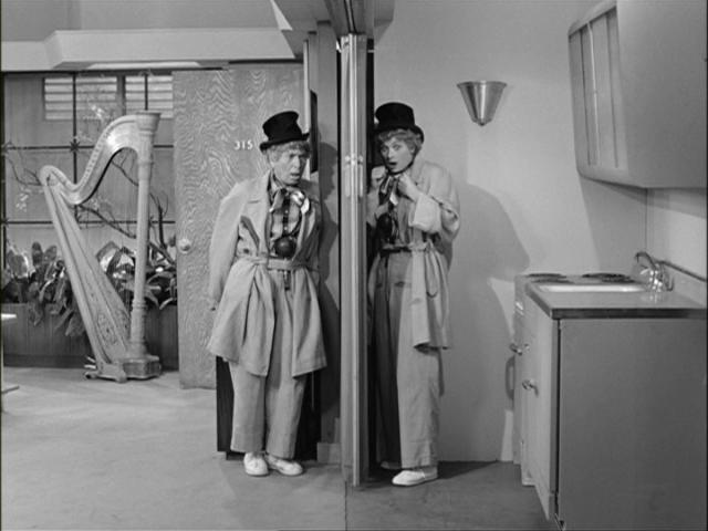 lucy and harpo.JPG
