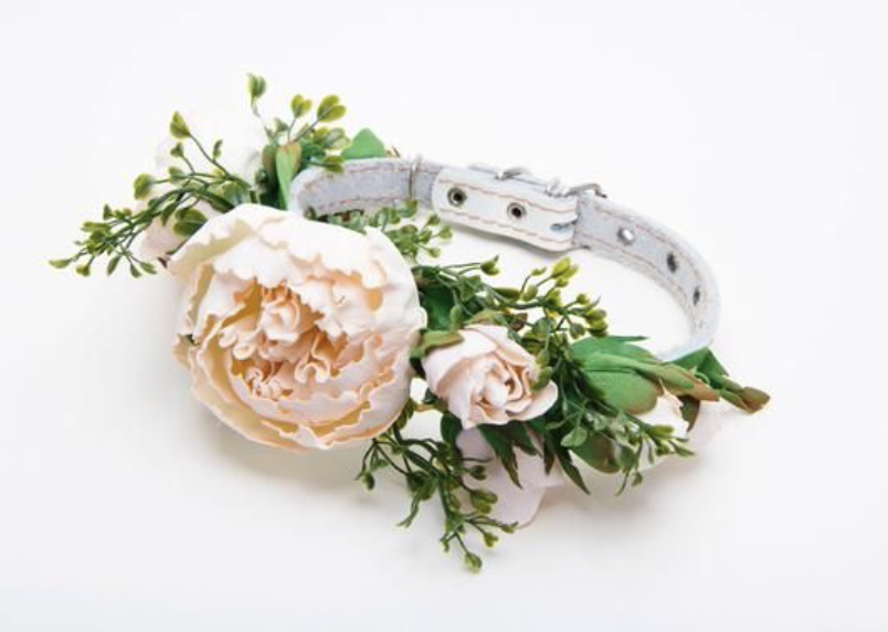 DIY floral pet collar