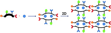 Graphical abstract: A sequentially assembled grid composed of supramolecular meso-helical nodes