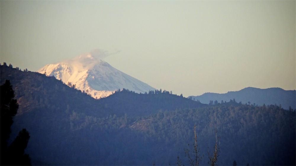 Shasta From A Building.jpg