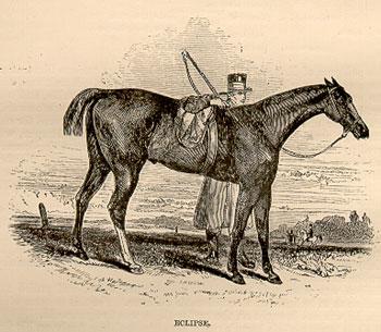 The famous racehorse Eclipse (1764 - 1789).