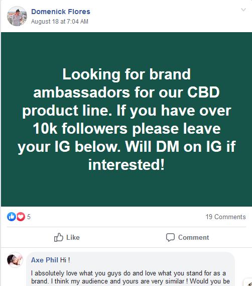 Instagram influencer groups