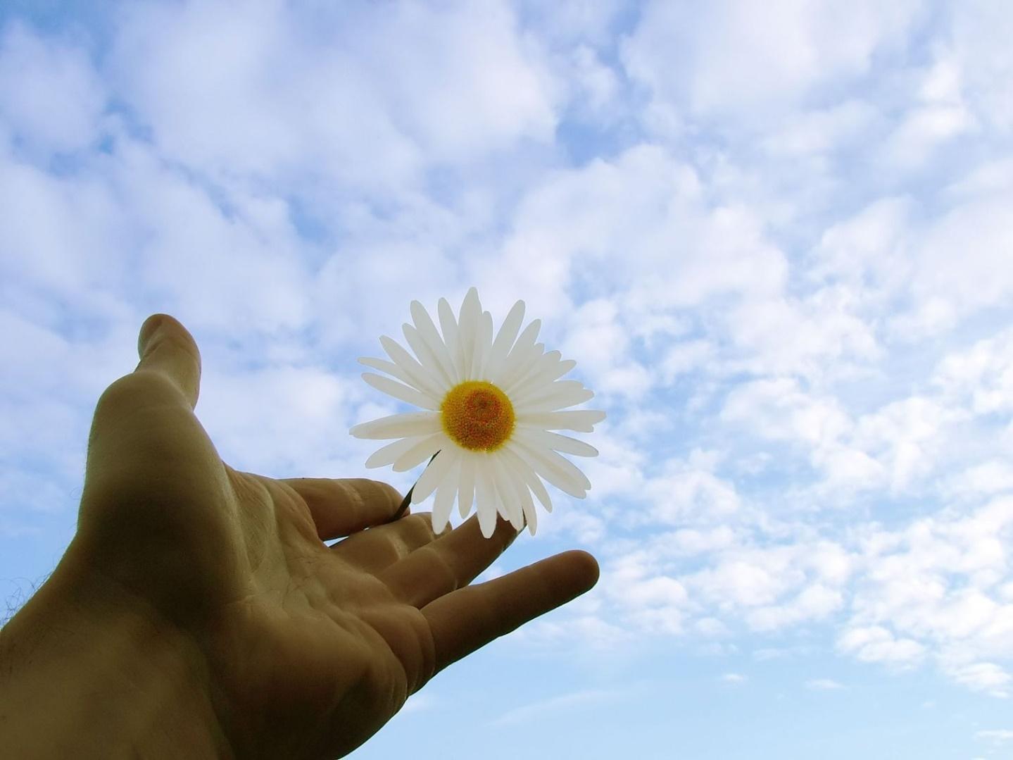 Mải mê tìm kiếm điều tốt nhất cho tương lai, có thể bạn đang bỏ lỡ những điều còn quan trọng hơn của hiện tại - Ảnh 4.