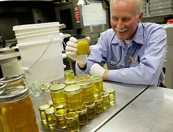 Работа пчеловода в США