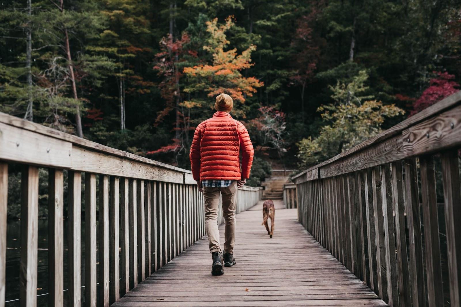 nd dog walking across bridge