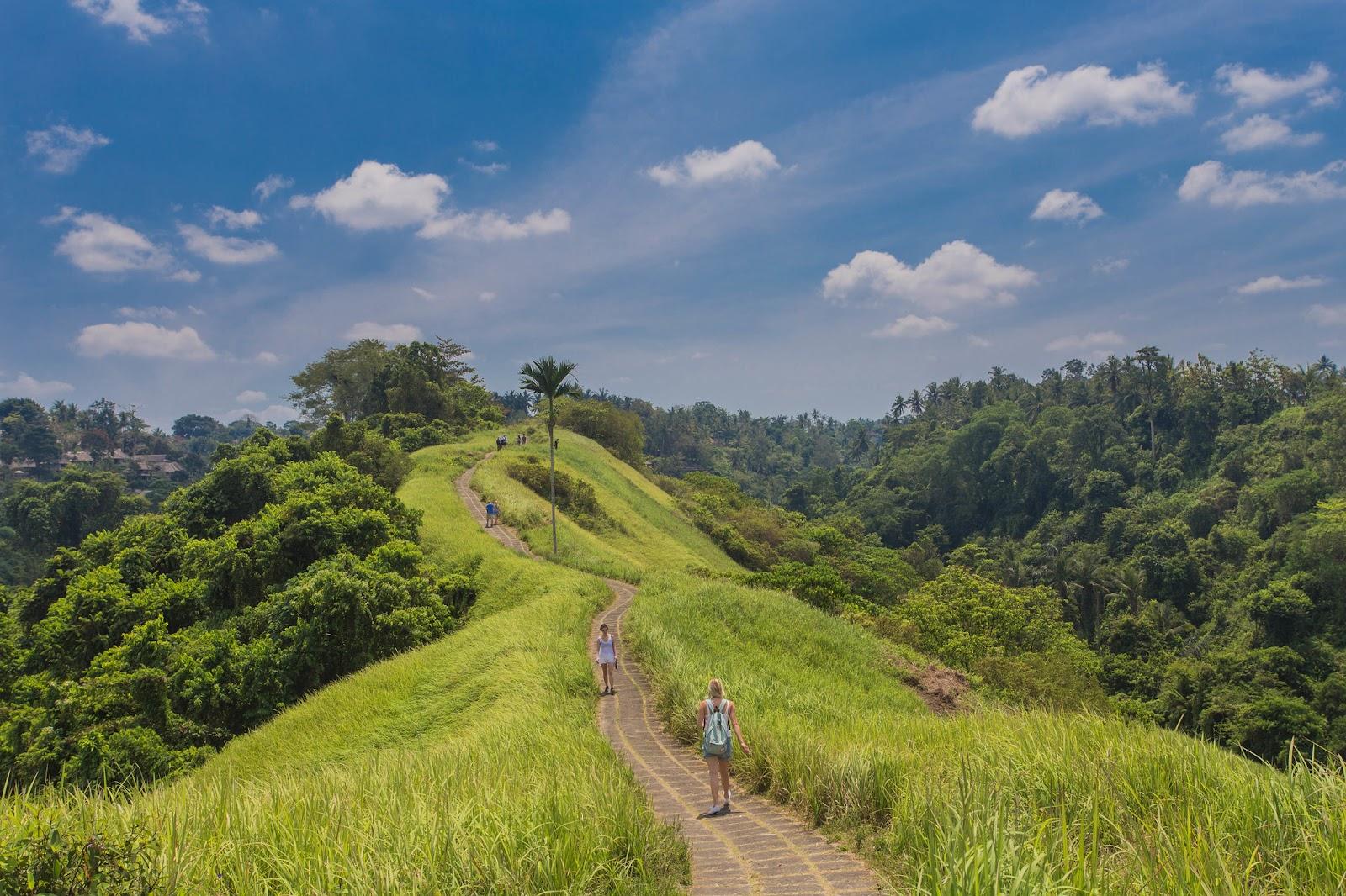عروسان يتمشان خلال منحدرات حقول الأرز