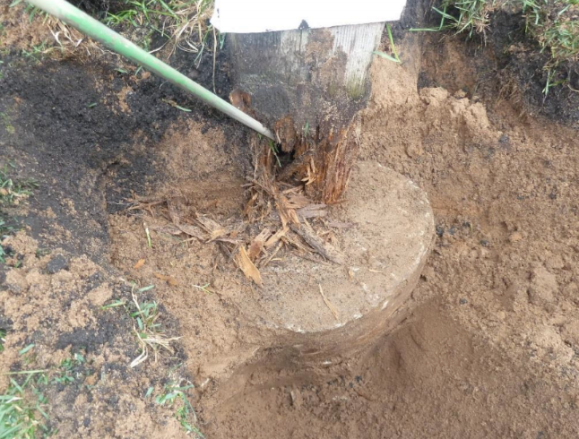 rotted footing from construction defect