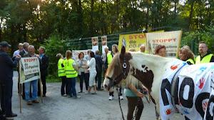 Protestler zu Fuß mit Schildern und einem Pferd mit Transparent: »No CO!«.