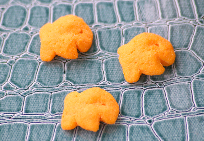New Goldfish Puffs for Kids Snack Idea by Kim Vij .png