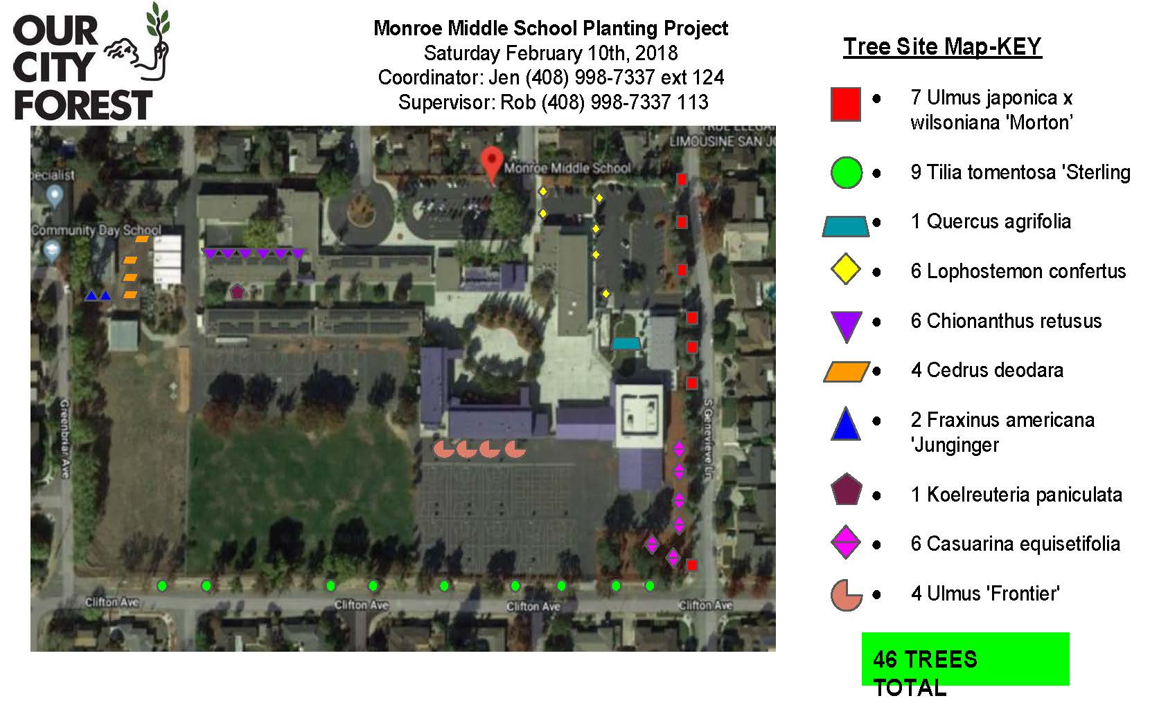 These are the trees (indicated by the red squares (7) and green circles (9), 16 total that Hamann Park would be responsible for watering, although part of this burden would potentially be shared with Monroe/Campbell Unified School District (they have already committed to supplying the water).