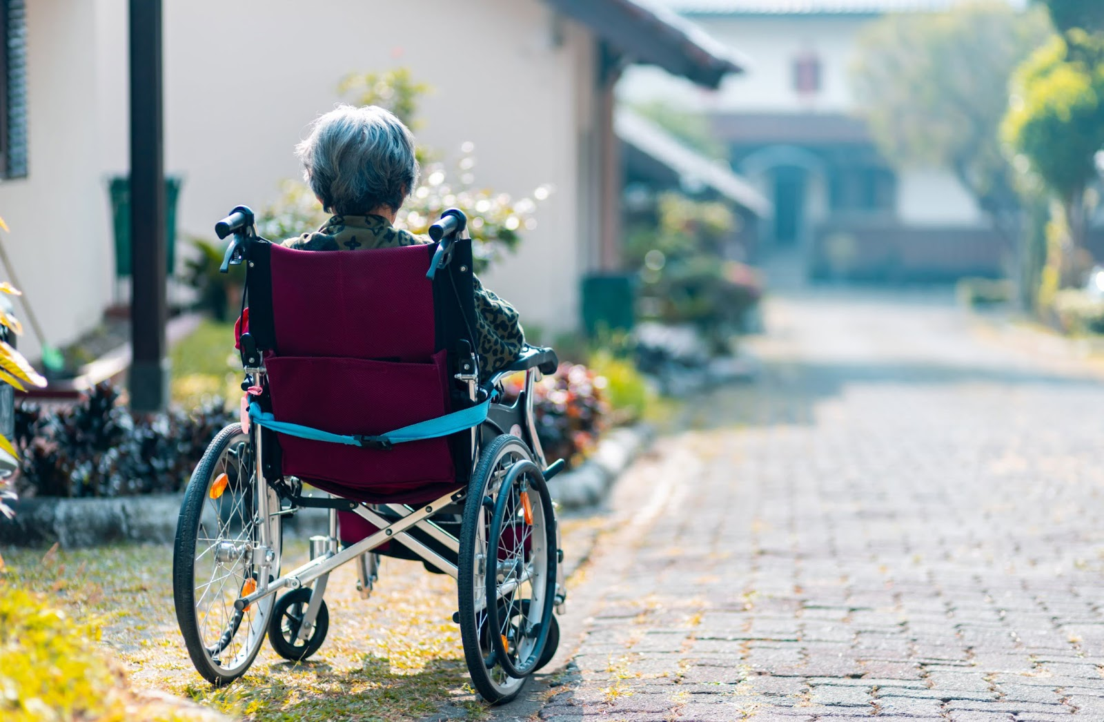 Alzheimer's disease (in-depth guide)