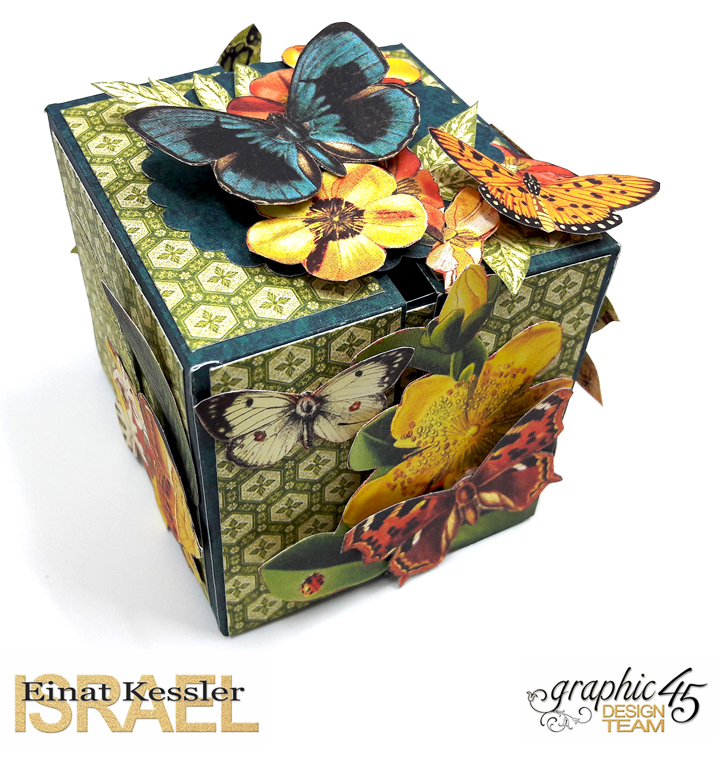 One Page Wonder Box, by Einat Kessler, Nature Sketchbook, Product by Graphic 45 photo 7.jpg