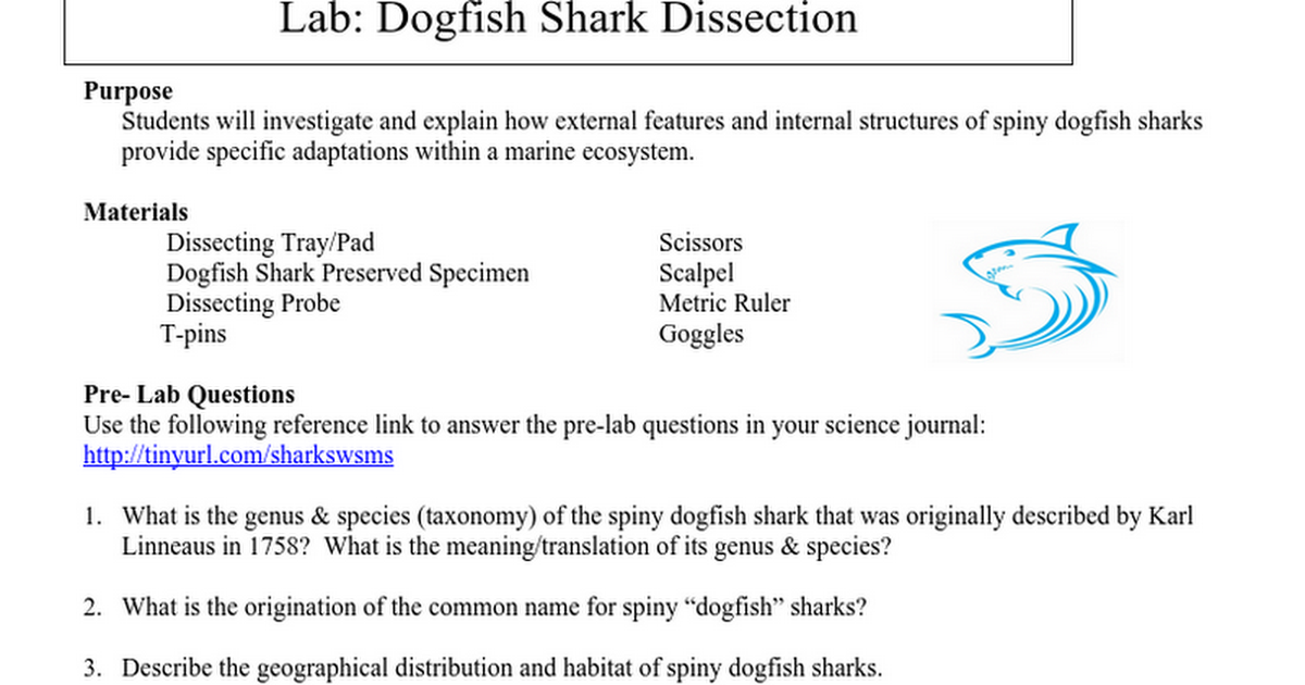 Copy of Pre Lab - Dogfish Shark Dissection.doc - Google Docs