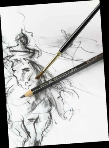 Graphite Aquarelle Pencil with sketch