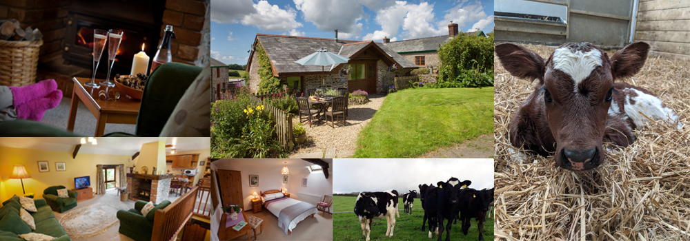 Bampfield Farm holiday cottages is a delightful accommodation site located in North Devon that is perfect for family holidays.