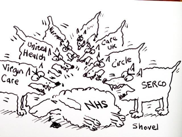 NHS cartoon by Martin Shovel