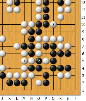Fan_AlphaGo_01_186.png